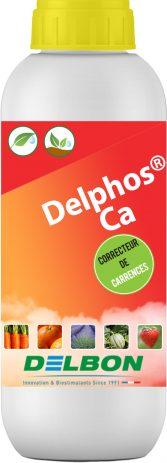Delphos_Ca