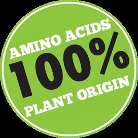 Acides-aminés-100-EN
