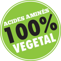 Acides-aminés-100-FR